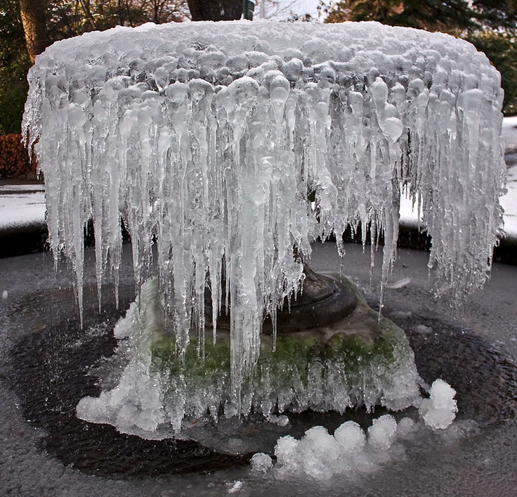 Jenny Lilly: Frozen Fountain at Birmingham Botanical Gardens, England / green home