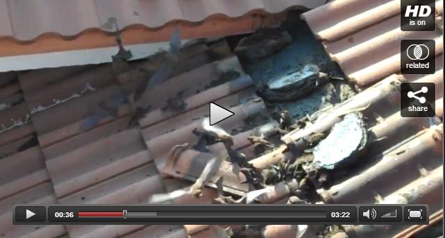 a roofers nightmare!    http://www.videofantastica.com/view_video/111489/
