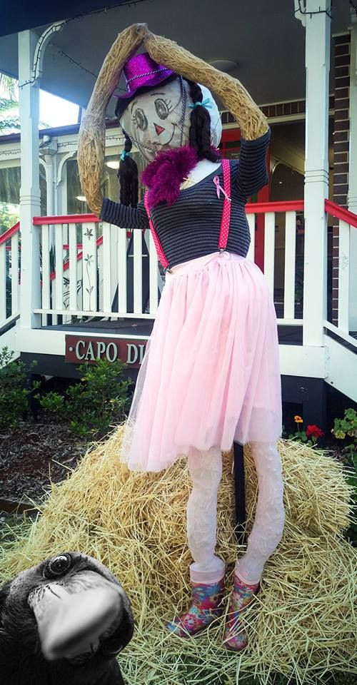 Our scarecrow 2015!