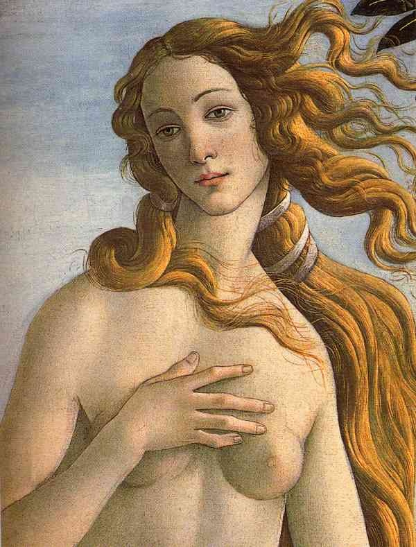"""classic beauty in art: Boticelli's """"The Birth of Venus"""" 1486 commissioned by Firenzi's  Medici family's Lorenzo di Pierfrancesco, now at Uffizi Gallery, Florence , Italy • this is the inspirational iconography used on Adobe Illustrator's branding/packaging for years ; ) (vers. 1-10, 1987-2001) before it was plain for CS series •http://en.wikipedia.org/wiki/The_Birth_of_Venus_(Botticelli) •http://blogs.adobe.com/brandexperience/2012/05/16/the-cs6-desktop-brand-system"""