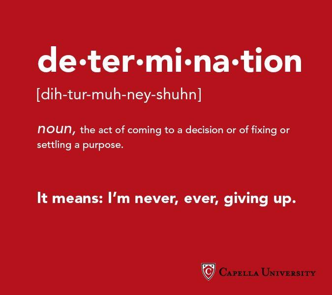 Example sentences containing 'determination'