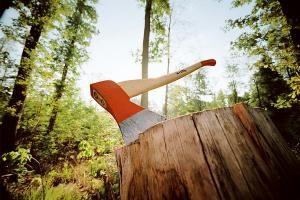 В Тамбове будут судить чёрного лесоруба который прятался в Липецкой области.  Перед судом предстанет 28-летний житель Тамбовской области состоящий в организованной преступной группировке. Его обвиняют в незаконной вырубке ценных пород деревьев. Подозреваемого задержали в Липецкой области.  В период с 2012 по 2013 год в Тамбовской области действовала организованная преступная группировка незаконно занимавшаяся вырубкой леса. В её составе находились семь человек. Все они - жители разных…