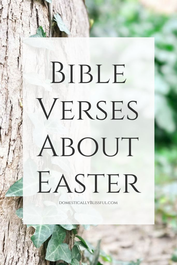 Bible versesabout Easter toreturn our focus to the real celebration of the resurrection of Jesus. | Easter verses | Easter bible verses | spring bible verses | spring verses | Christs resurrection | cross | life | Christian | Christianity | Bible quotes | Bible promises | patient | hope | love | faith | bible verses quotes | bible study | bible journaling | bible verses to live by |