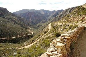 Swartberg- Pass-Safari-Ostrich-Farm-Oudtshoorn-South-Africa