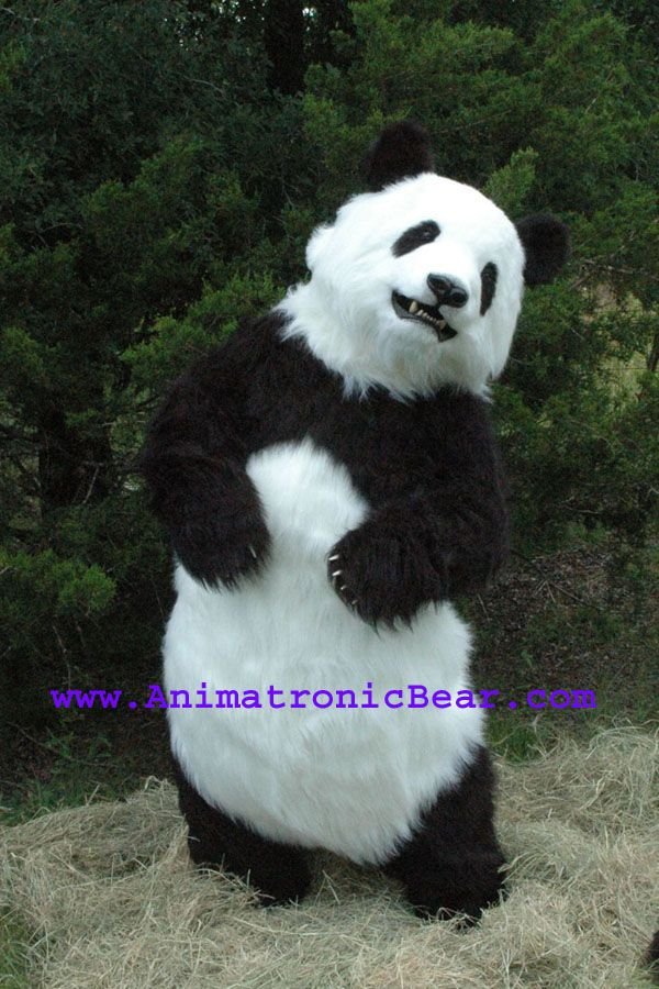 61 best realistic bear costume images on Pinterest | Wild ... - photo#16