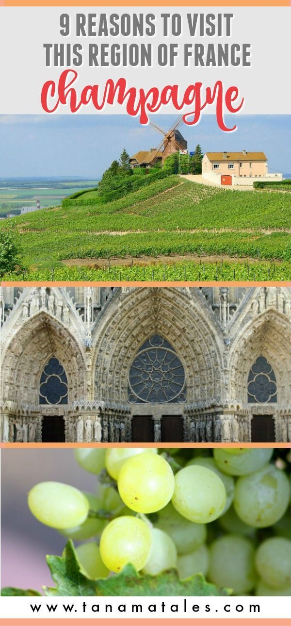 Champagne-Ardenne is an area of France that is sometimes overlooked by more popular destinations in the country. Here are 9 reasons why you must visit - Things to do in Champagne (or day trip from Paris) and travel ideas.