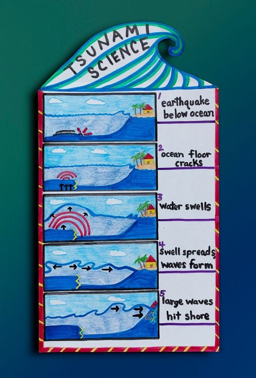 Track a Tsunami lesson plan. The student will understand how Tsunamis, or gigantic waves, are one of the most destructive natural disasters. They will portray how they're formed, deep under the ocean surface. SS