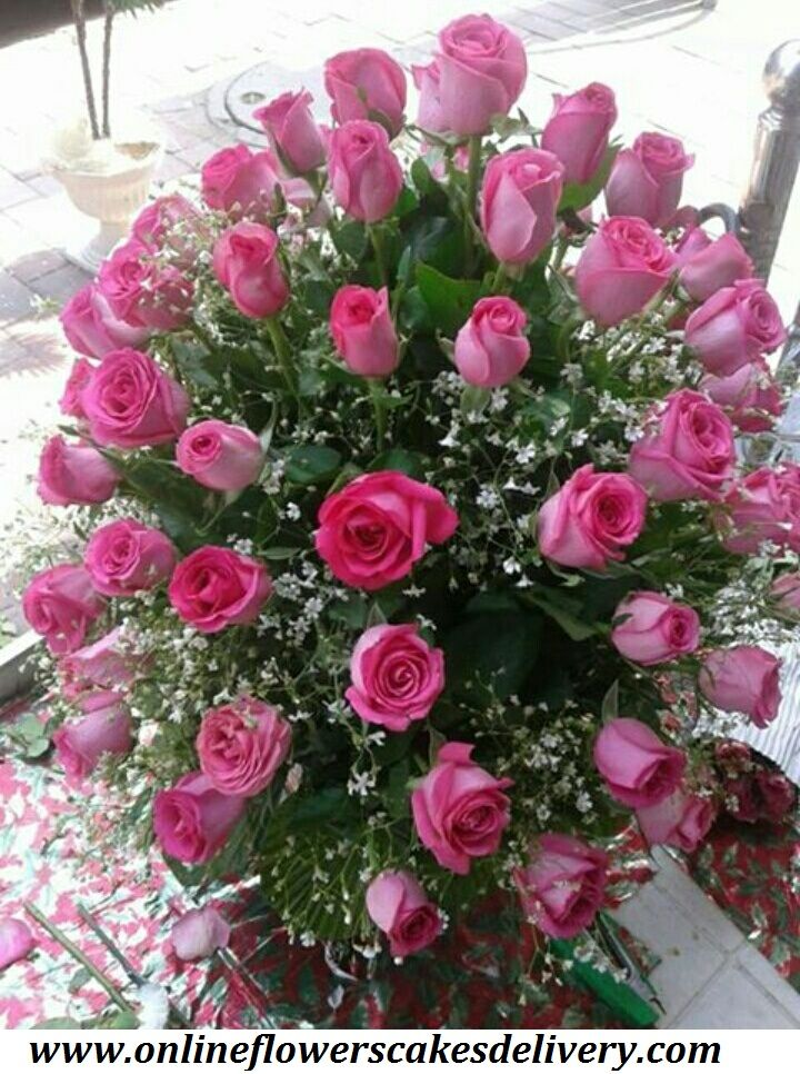 Send flowers to Jaipur for occasions like birthdays, anniversaries, valentine's day, weddings from anywhere in the world. You can send flowers like roses, lilies, gerberas & orchids to different places in Jaipur, #Jaipur #Jaipurflorist #Samedayflowersdelivery #Samedaycakedelivery #Indiaflorist #Onlineflorist #Freshroses #Pinkroses URL :- www.onlineflowerscakesdelivery.com