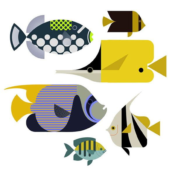Tropical Reef Fish on Behance