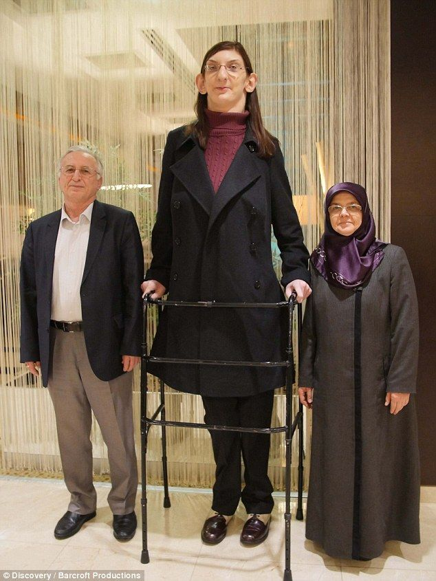 Rumeysa Gelgi, 19, from Turkey, pictured with her parents, is the world's tallest female teenager, standing at seven foot tall