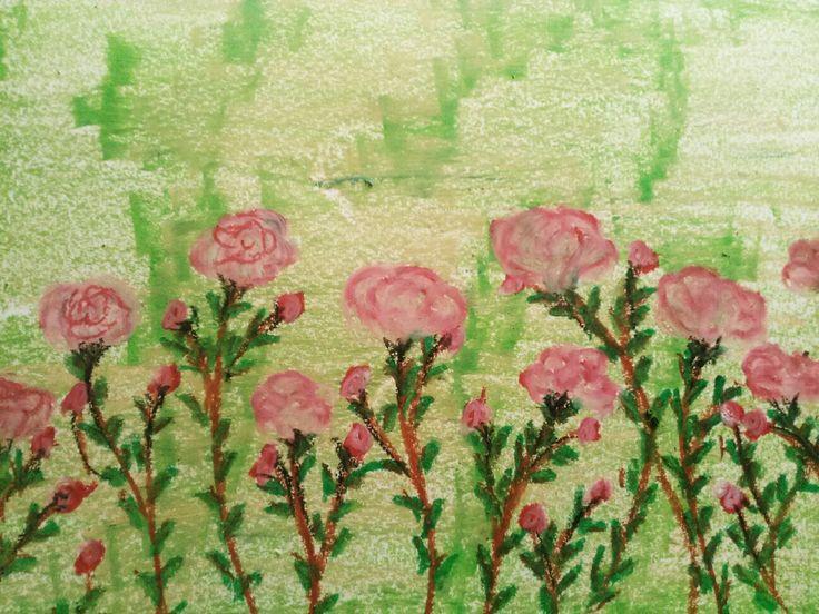 Wonderfull pink rose