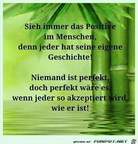 ...Niemand ist perfekt!!!
