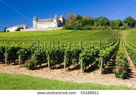 Wine Bourgogne stockfoton & bilder | Shutterstock