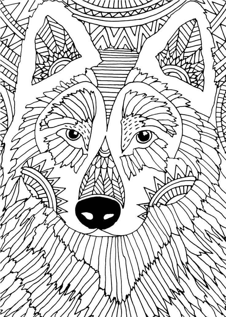 214 Best Animal Lineart Coloring Pages Images On Pinterest