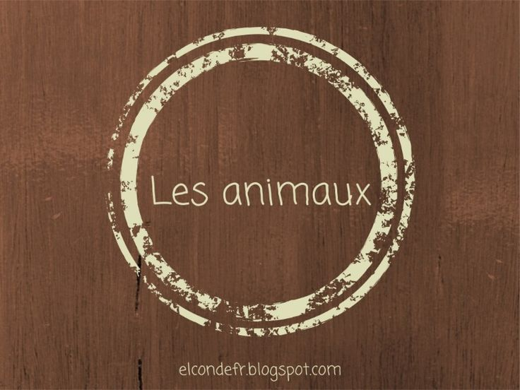 Animaux by Virginia elcondefr via slideshare