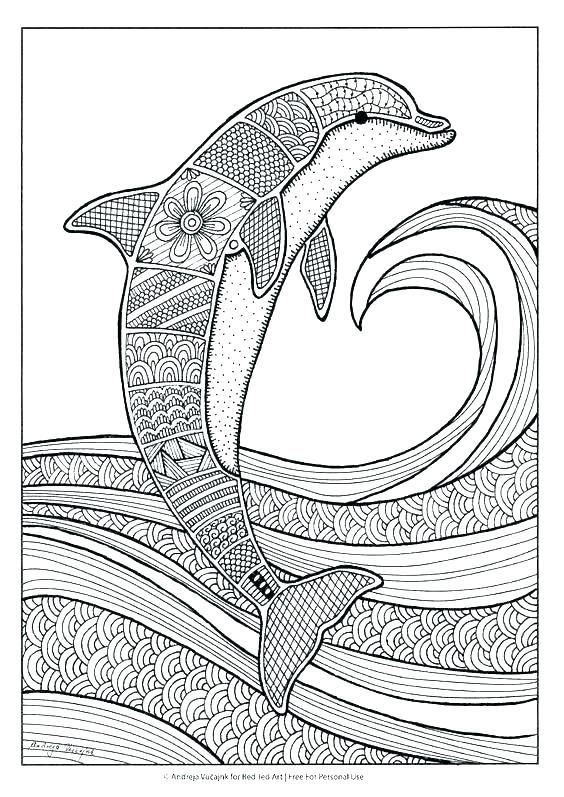 dolphin tale printable coloring pages - photo#5