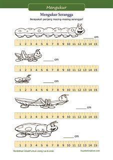 Belajar membaca penggaris, mengukur gambar panjang serangga. Berlatih dasar mengukur untuk anak SD kelas 1