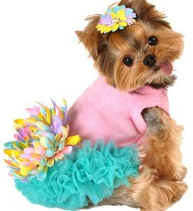 Pink Dog Dresses For Small Dogs Leilani Cute princess!