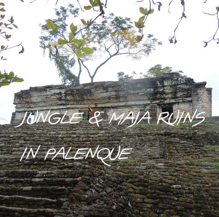In a long night bus ride we cross the country and arrive to jungle feeling and the Mayan Ruins in Palenque. Mexico has so many different places to explore! 🎋 Has anyone been to Palenque?