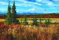 Denali National Park USA (1500 parça) Educa puzzle 58,90 TL