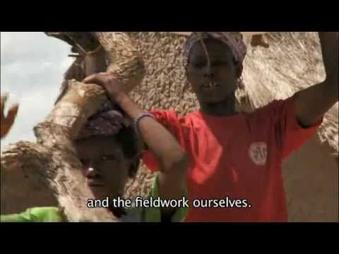 Why Livestock? - summary (Length: 2:57) What happens when farming families in poor countries lose their most important possessions? Through the words of one African family, we learn how livestock losses can change lives. 'Life is hard for us now without livestock,' says this family.