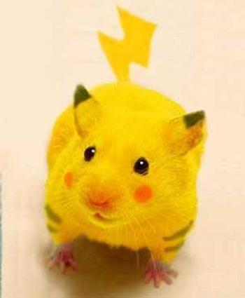 real life pokemon Pikachu