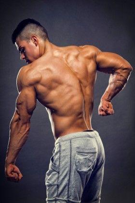 bulk muscles