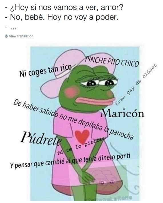 22 Veces que la rana Pepe nos entendió mejor que nadie en el 2015
