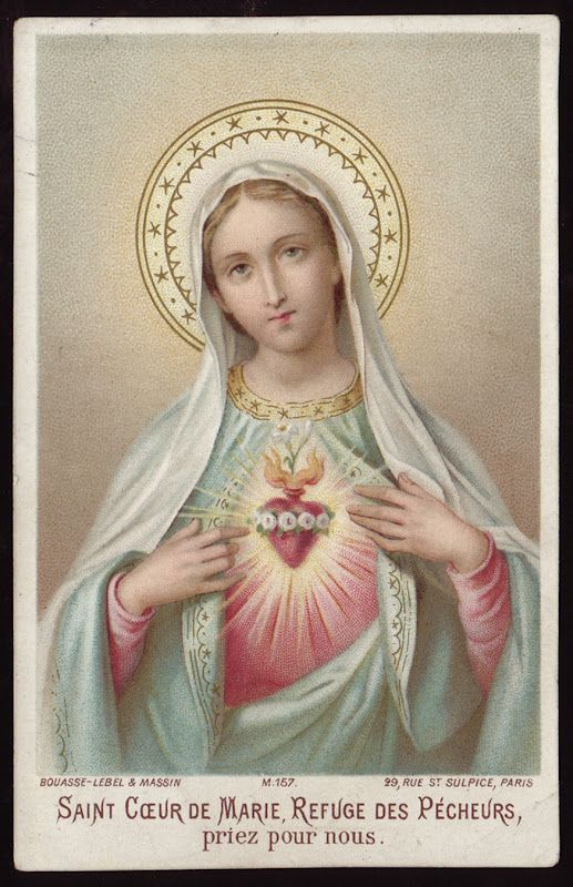 Santa Maria, refugios de los pecadores, ruega por nosotros