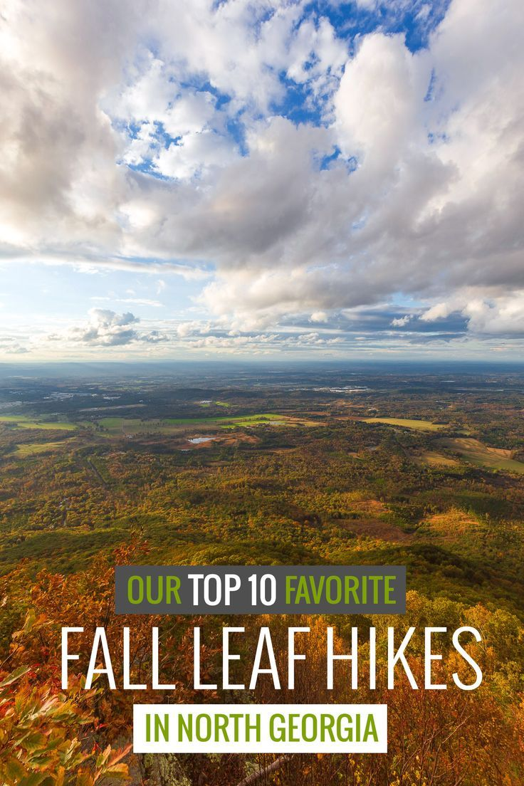 Hike our top 10 favorite Fall trails in North Georgia to beautiful autumn leaf…