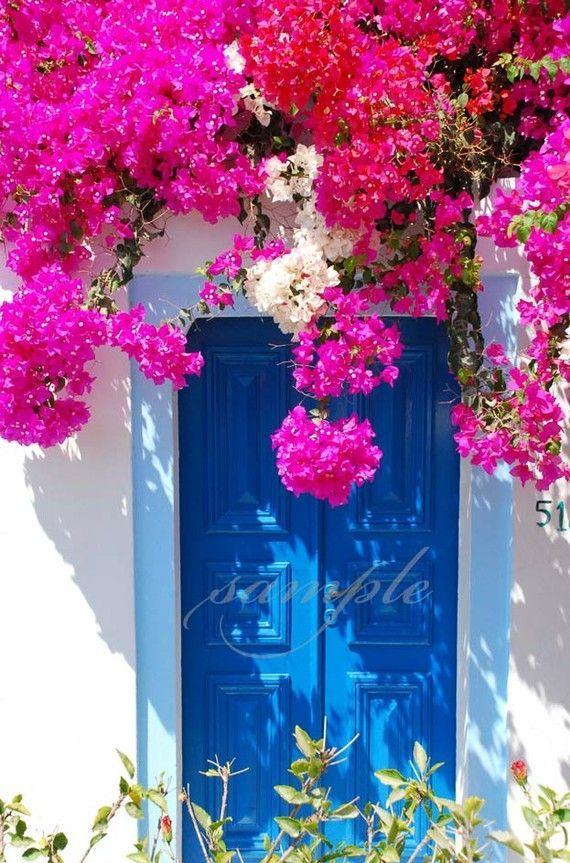 Flowers over the Gate of Santorini - Greece