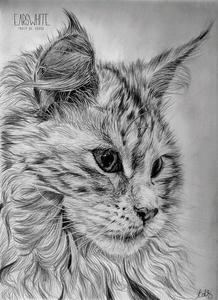 Dessin au crayon noir format a4 art artist draw - Animal a dessiner ...