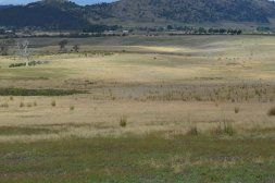 Marengo Farm: Horse Stud, Mixed Farming , with irrigation! We must be dreaming! Amazing horse property.   #TAS