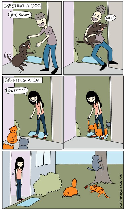 catversushuman:Unless I have treats…