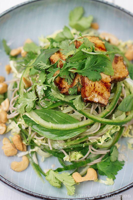 Plantaardige, vegan, veganistische en vegetarische recepten voor dierenwelzijn, je gezondheid, het milieu én wereldvoedselverdeling. D Rozeboom