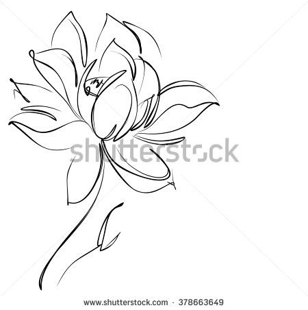 25 best ideas about lotus drawing on pinterest lotus