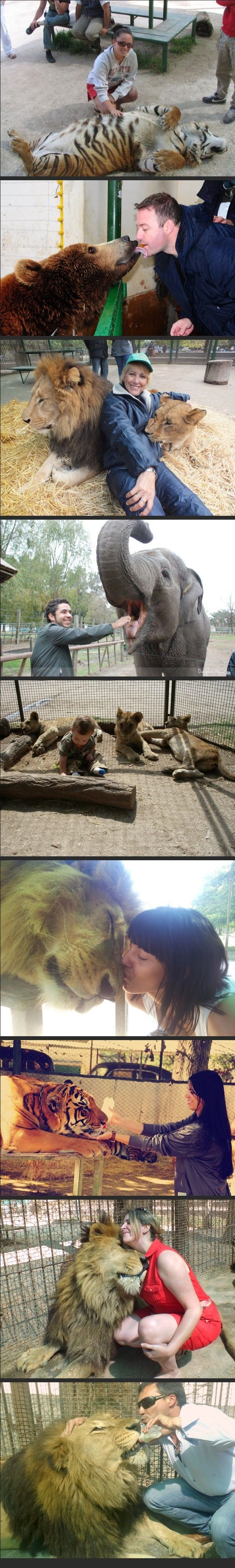 Extreme Petting Zoo (Lujan Zoo) in Argentina