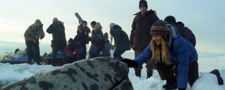 Qualcosa di straordinario (2012) DRAMMATICO – DURATA 107′ – USA In Alaska, il giornalista Adam unisce le proprie forze a quelle dell'ex fidanzata Rachel, volontaria di Greenpeace, per salvare la vita di tre balene grigie imprigionate nei mari ghiacciati del Polo Nord. In piena Guerra Fredda e con l'aiuto della popolazione locale, i due riescono a creare un clima distensivo tra l'esercito russo e quello americano…