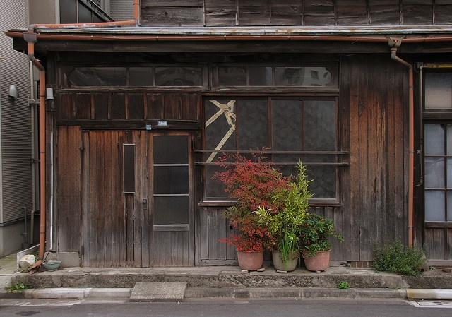 Potted plants in front of a small Japanese home