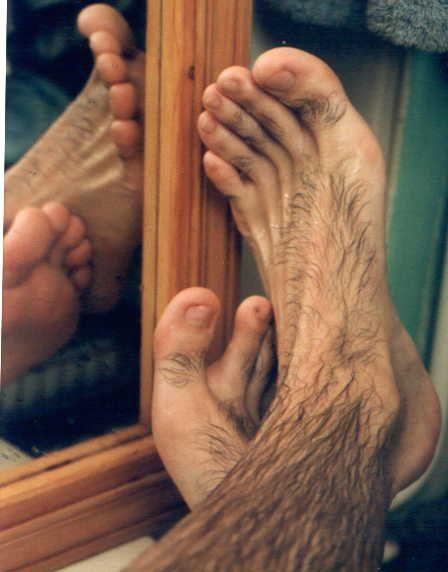 Gay hairy feet