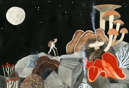La ilustración de Carson Ellis