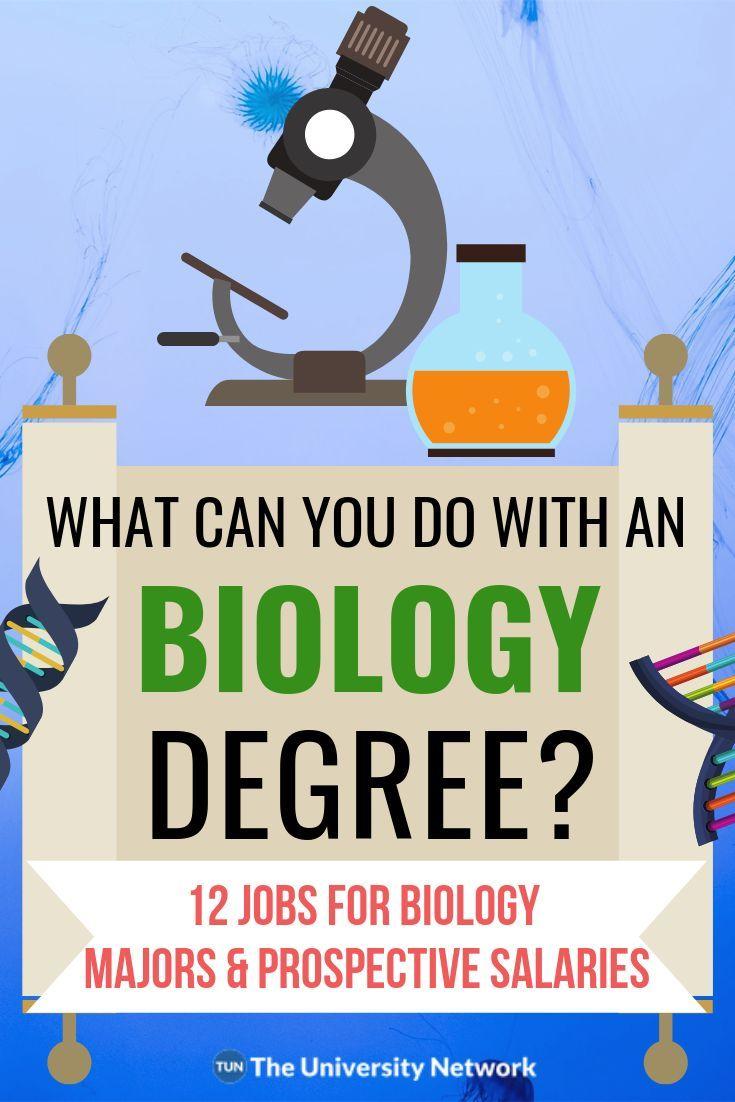 12 Jobs For Biology Majors The University Network Biology Major Biology Jobs Biology Degree