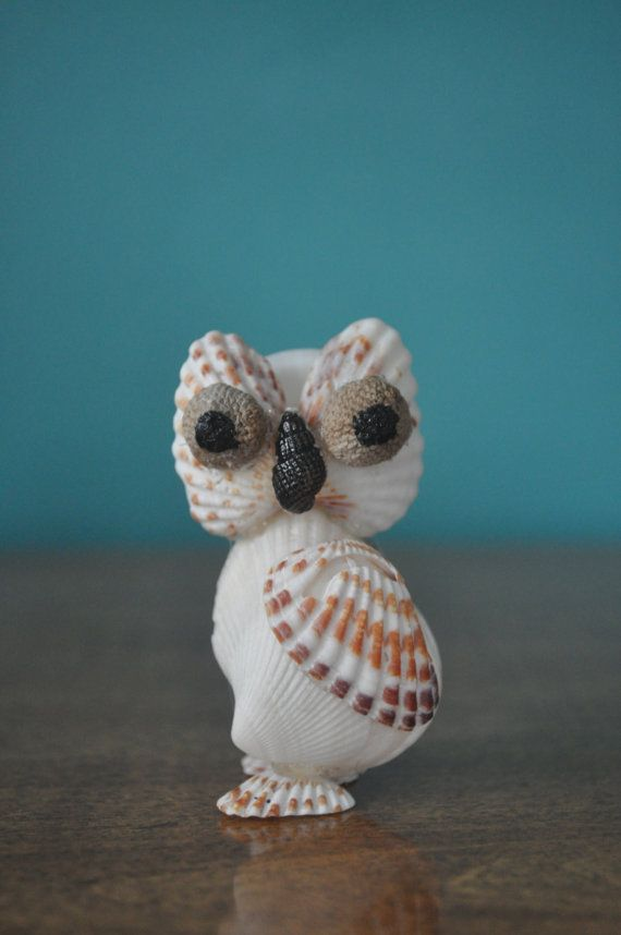 Broad-Ribbed Cardita Seashell Owl by BCSeaShells on Etsy