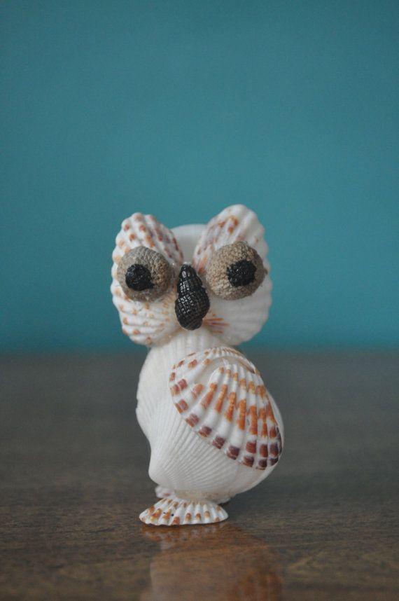 Broad-Ribbed Cardita Seashell Owl by BCSeaShells on Etsy