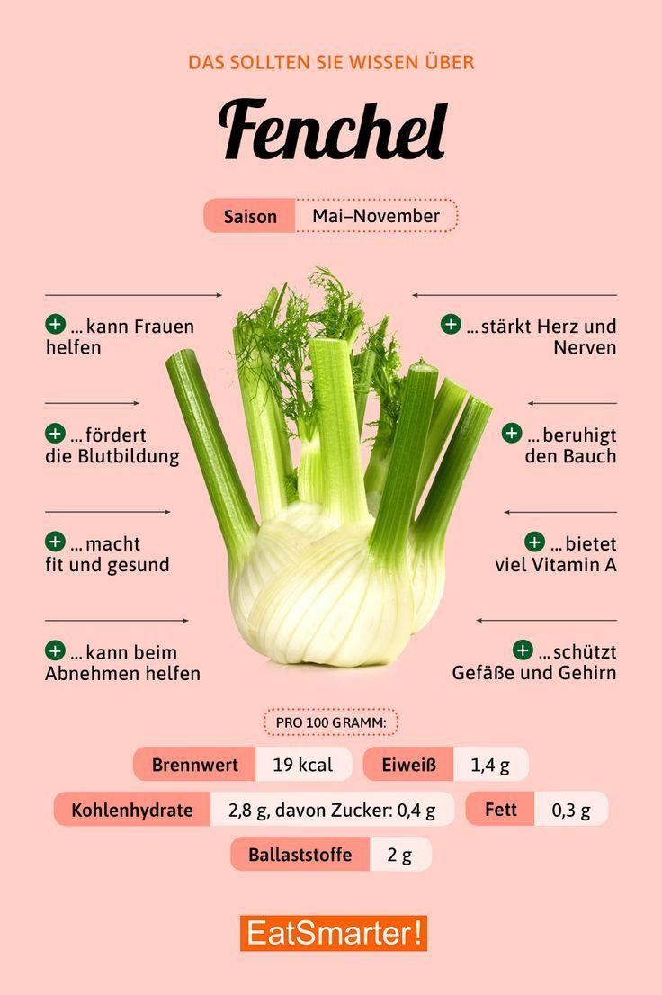 Das solltest du über Fenchel wissen! | eatsmarter.de # Ernährung #infografik #f …   – Feeder