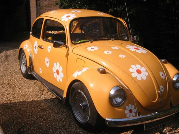 Classic Vw With White Daisies With Orange Centers Daisy