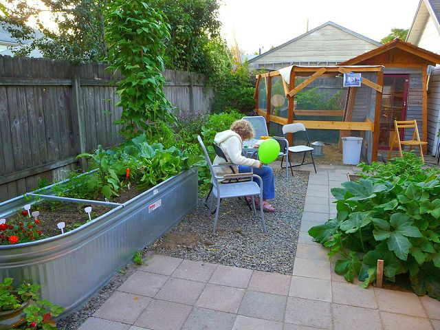 I keep seeing stock tanks as raised garden beds - the more I see it, the more I think it's the way to go.