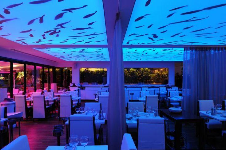 plafond tendu lumineux a changement de couleur pour le restaurant auberge de port bandol pr s. Black Bedroom Furniture Sets. Home Design Ideas