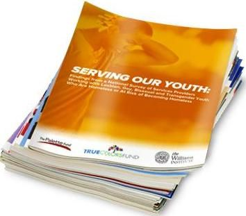 Serving Our Youth: Findings from a National Survey of Service Providers Working with Lesbian, Gay, Bisexual and Transgender Youth Who Are Homeless or At Risk of Becoming Homeless