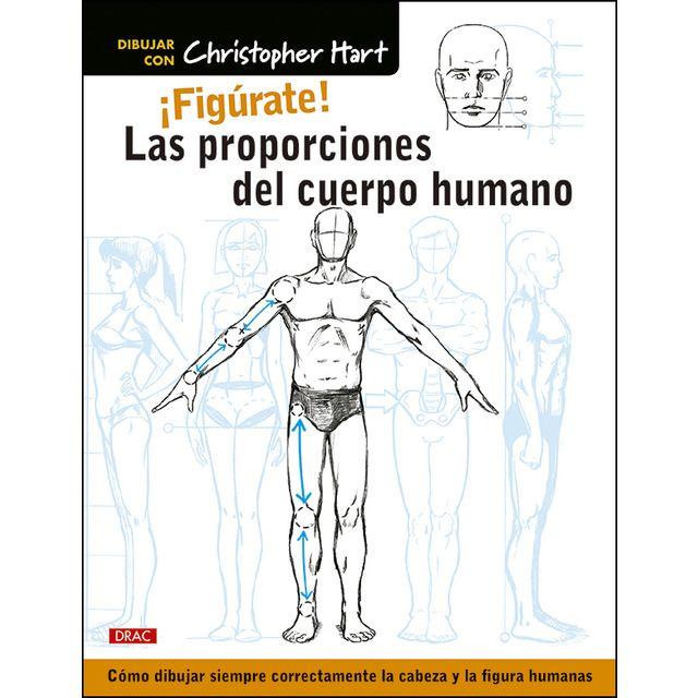 La Herramienta Necesaria Para Dibujar Bien La Cabeza Y La Figura Humana Muchos Artista Proporciones Del Cuerpo Humano Cuerpo Humano Cuerpo Humano Para Dibujar